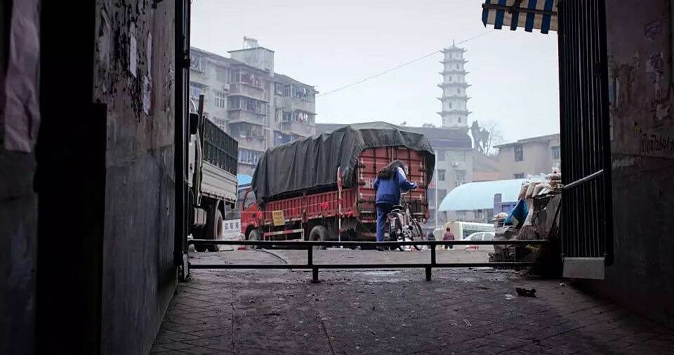 笨鳥:中國偏鄉少女的科技生活樣貌┃影評┃台北電影節