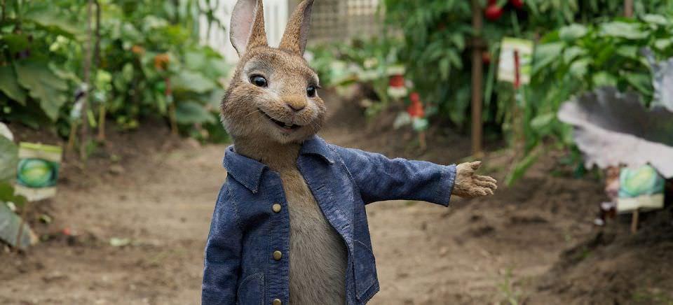比得兔:一場愉快的下午茶趴踢,真人與動畫的完美結合┃影評