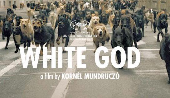 【影評】《忠犬追殺令》White God